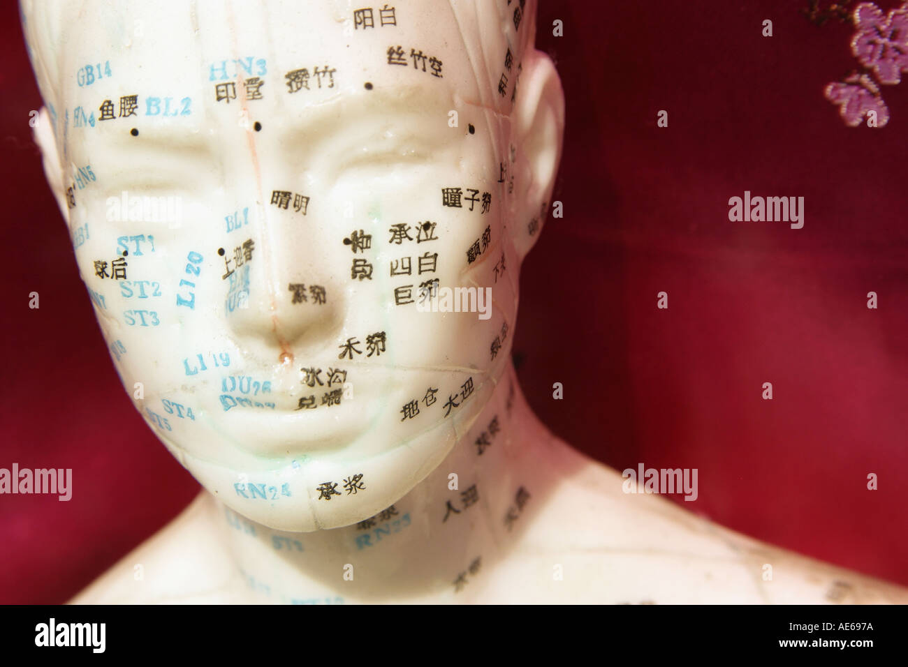 Acupuncture Points Stock Photos & Acupuncture Points Stock