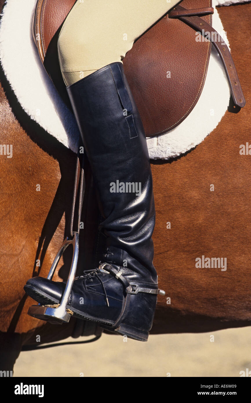 horseback rider boot in stirrup English saddle - Stock Image
