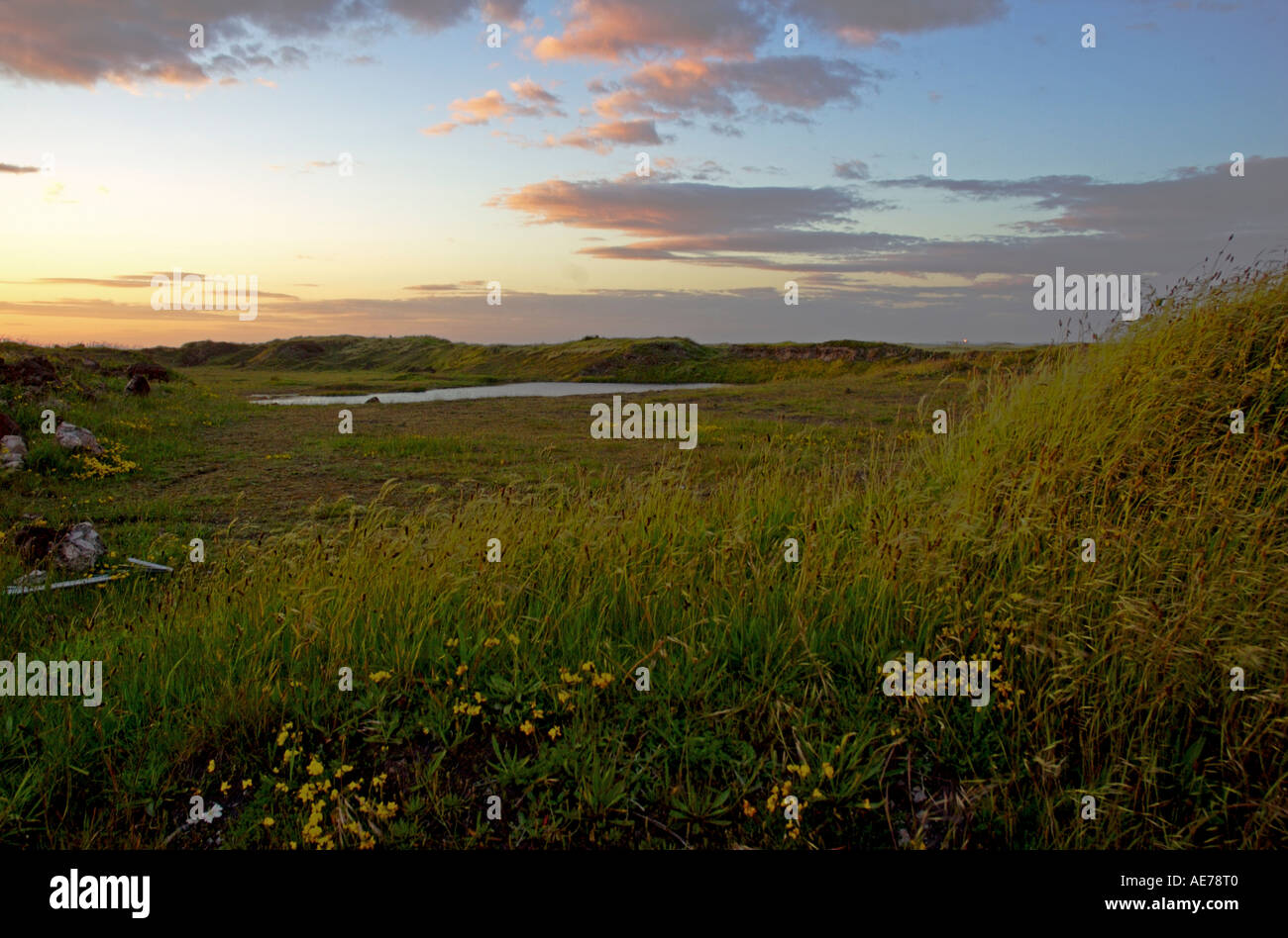 landscape with steelworks - Stock Image