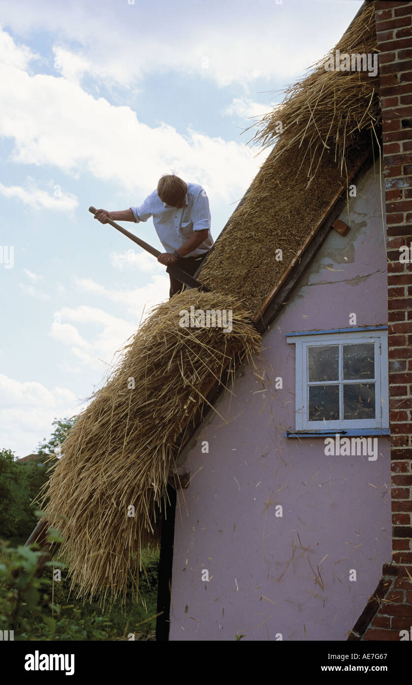 Traditional thatch roof on refurbished cottage nearing completion village of Lindsey Suffolk - Stock Image