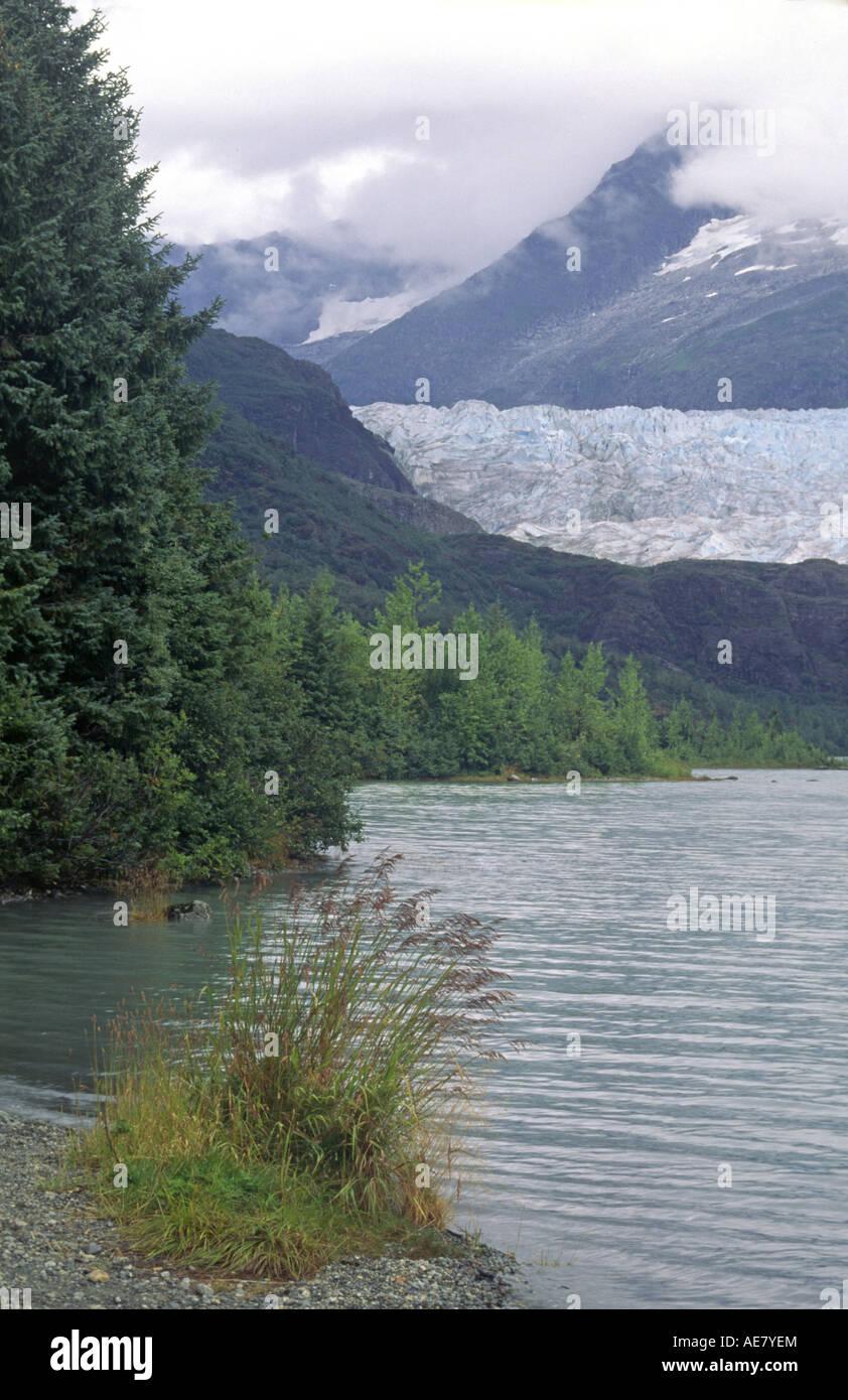 Mendenhall Glacier as seen from Mendenhall Lake, USA, Alaska, Juneau - Stock Image