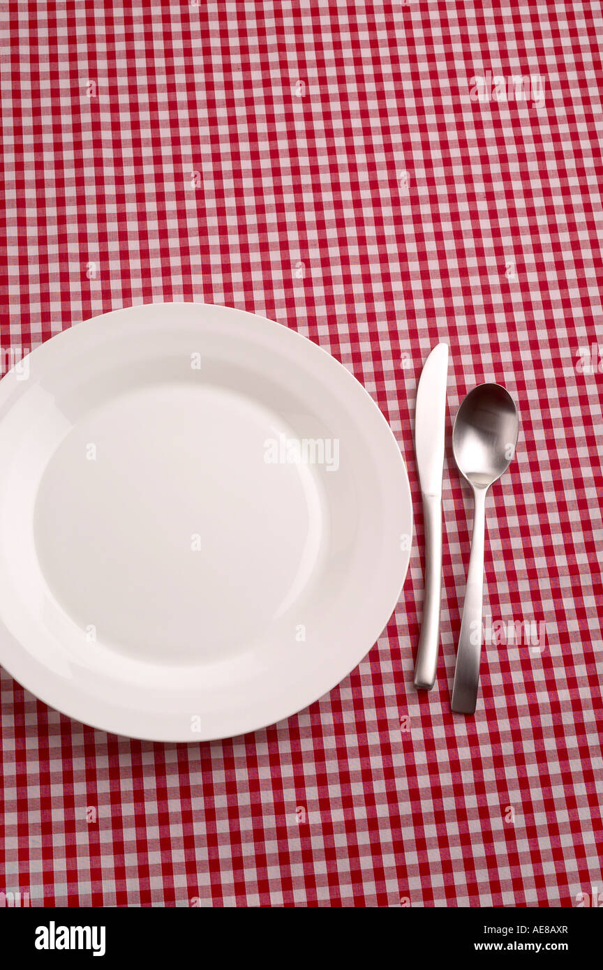 EMPTY WHITE PLATE ON A RED GINGHAM TABLECLOTH WITH A KNIFE AND SPOON. - Stock Image