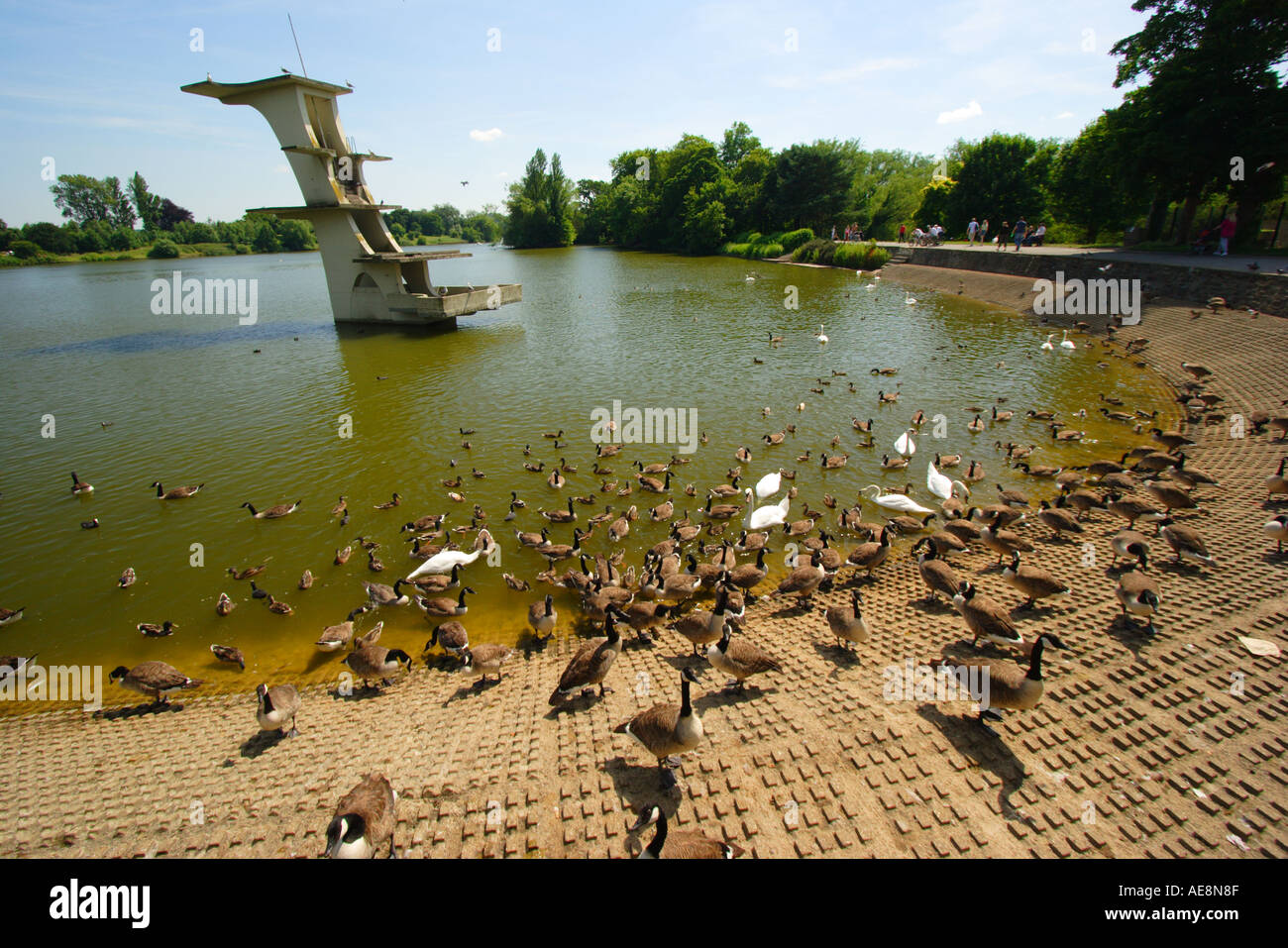 Water Country Stock Photos & Water Country Stock Images - Alamy
