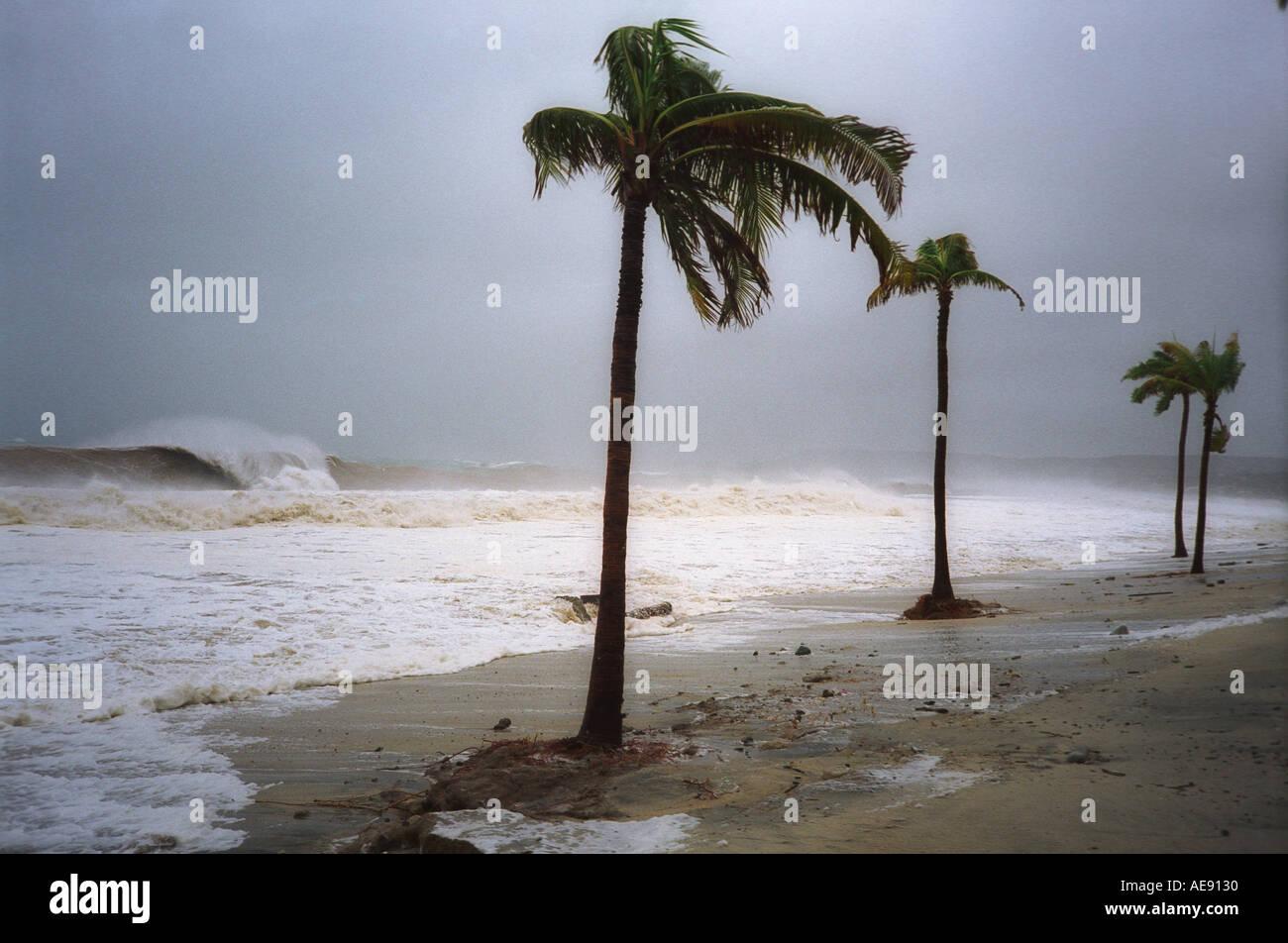 Beach during hurricane in Baja California Mexico - Stock Image
