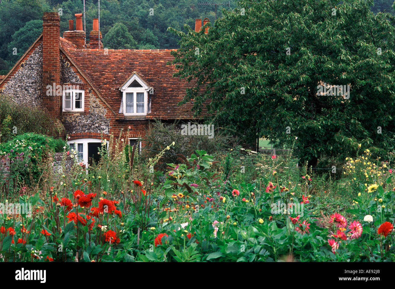 Pretty flint and terracotta tiled cottage and classic English flower garden in village of Hambleden, Buckinghamshire, England - Stock Image