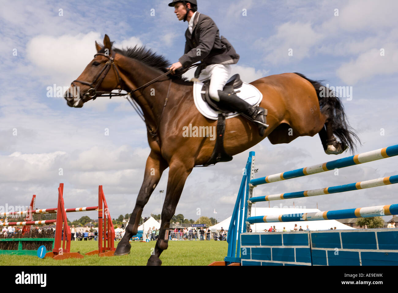 Equestrian sport horse riders show jumping competition ...