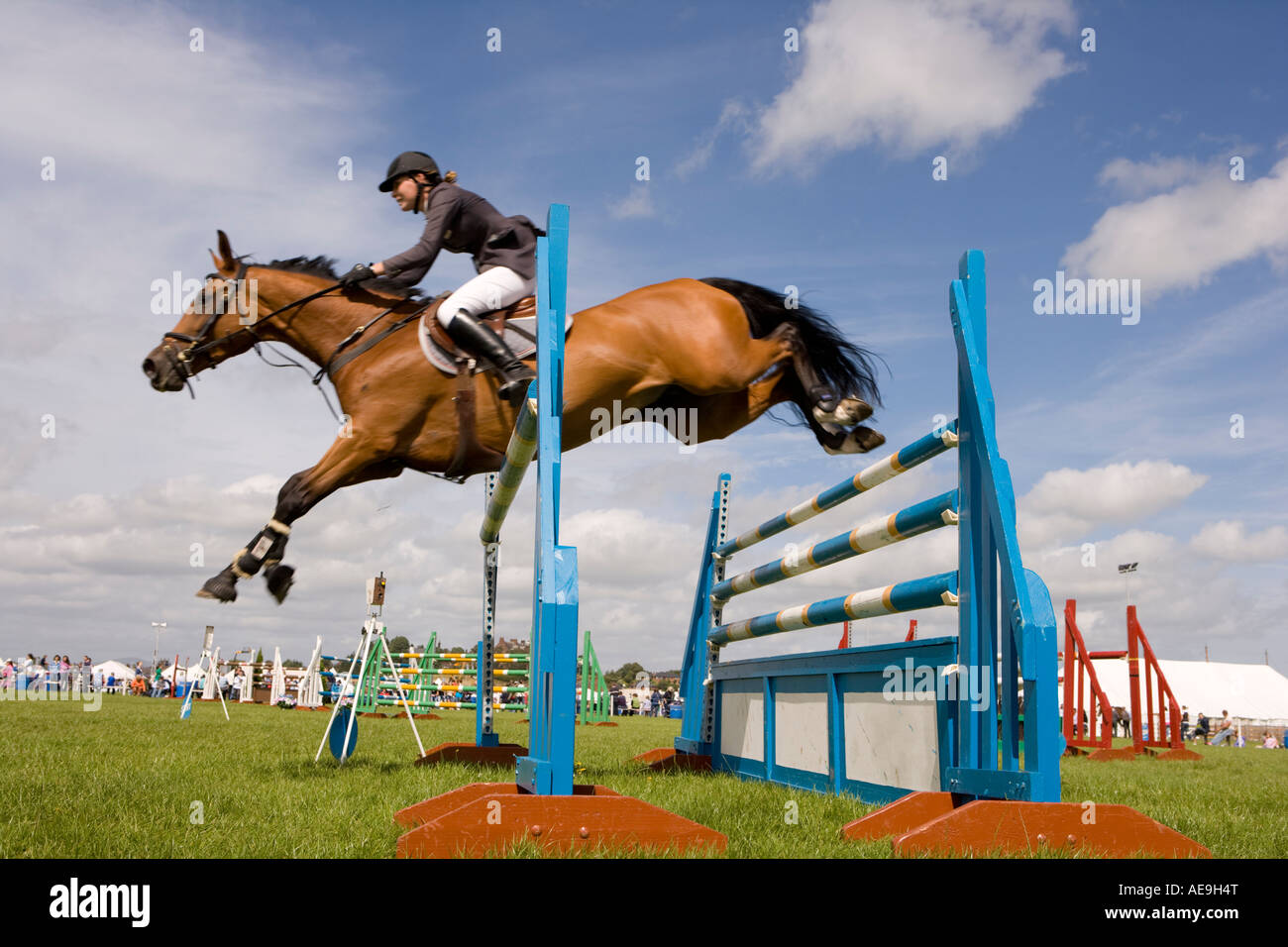 Horse Jumping Stock Photos & Horse Jumping Stock Images ...