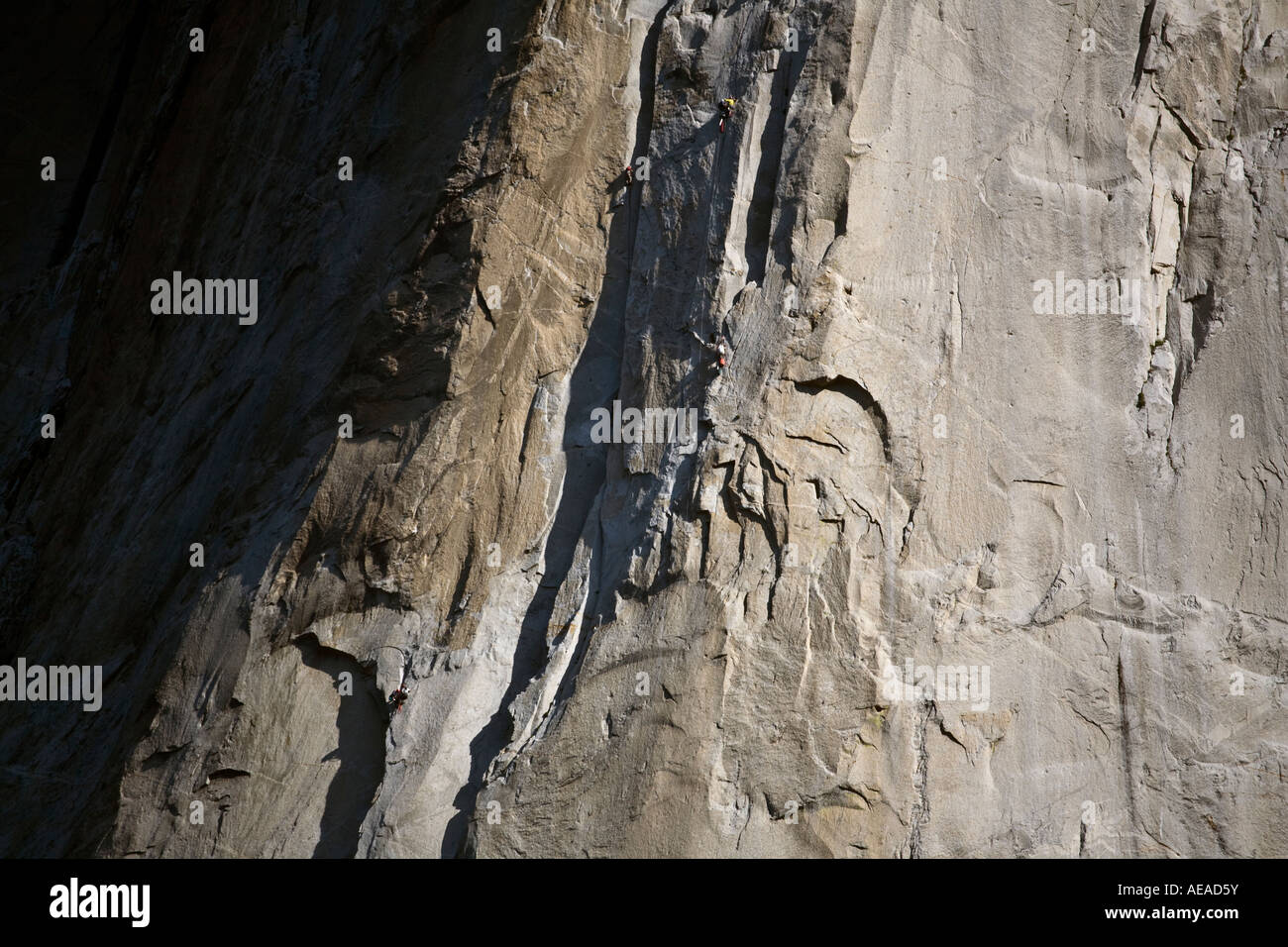 CLIMBERS on the face of EL CAPITAN in the YOSEMITE VALLEY