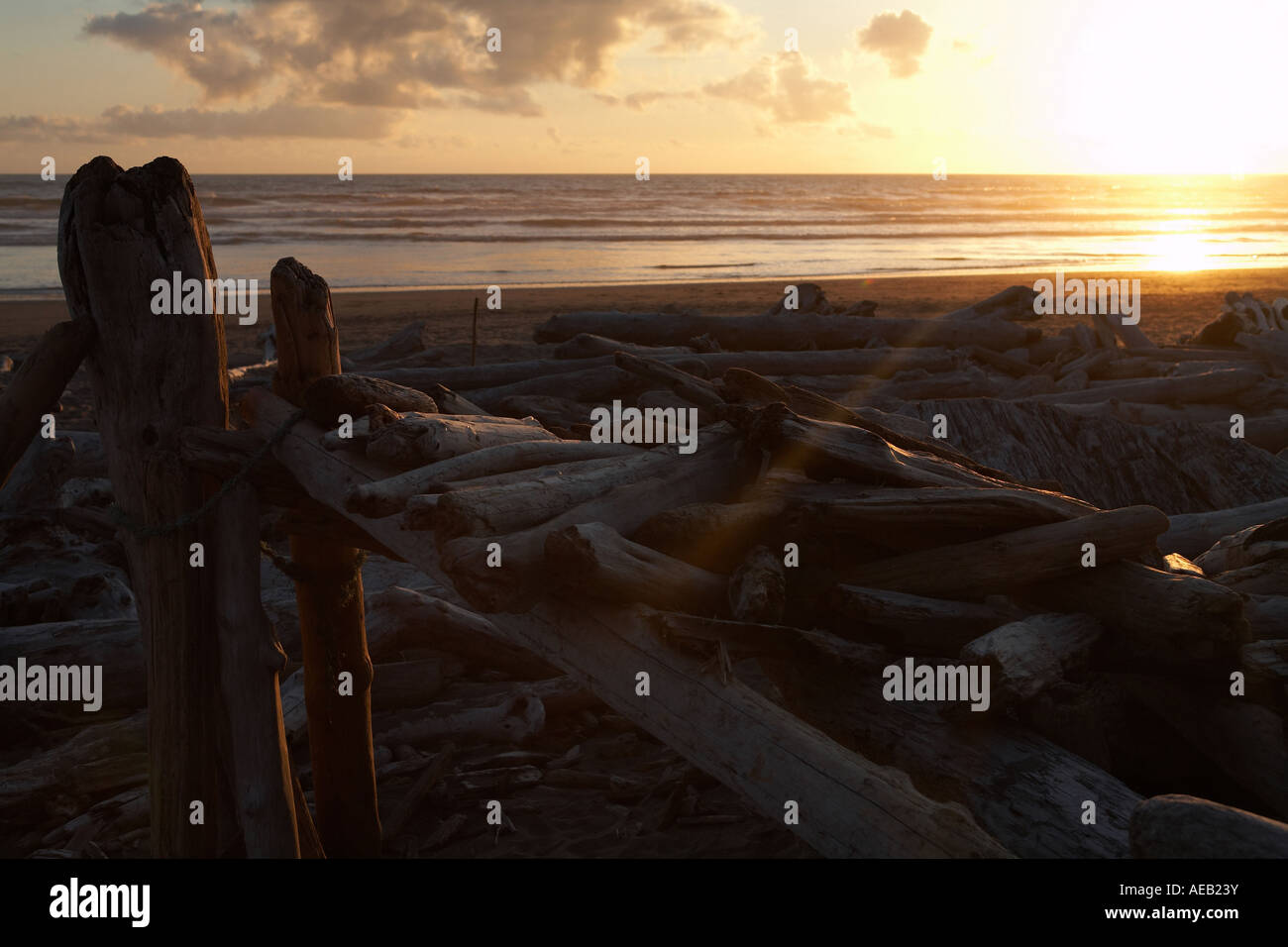 Sunset Over Giant Wood Structure on Kalaloch Beach, Olympic