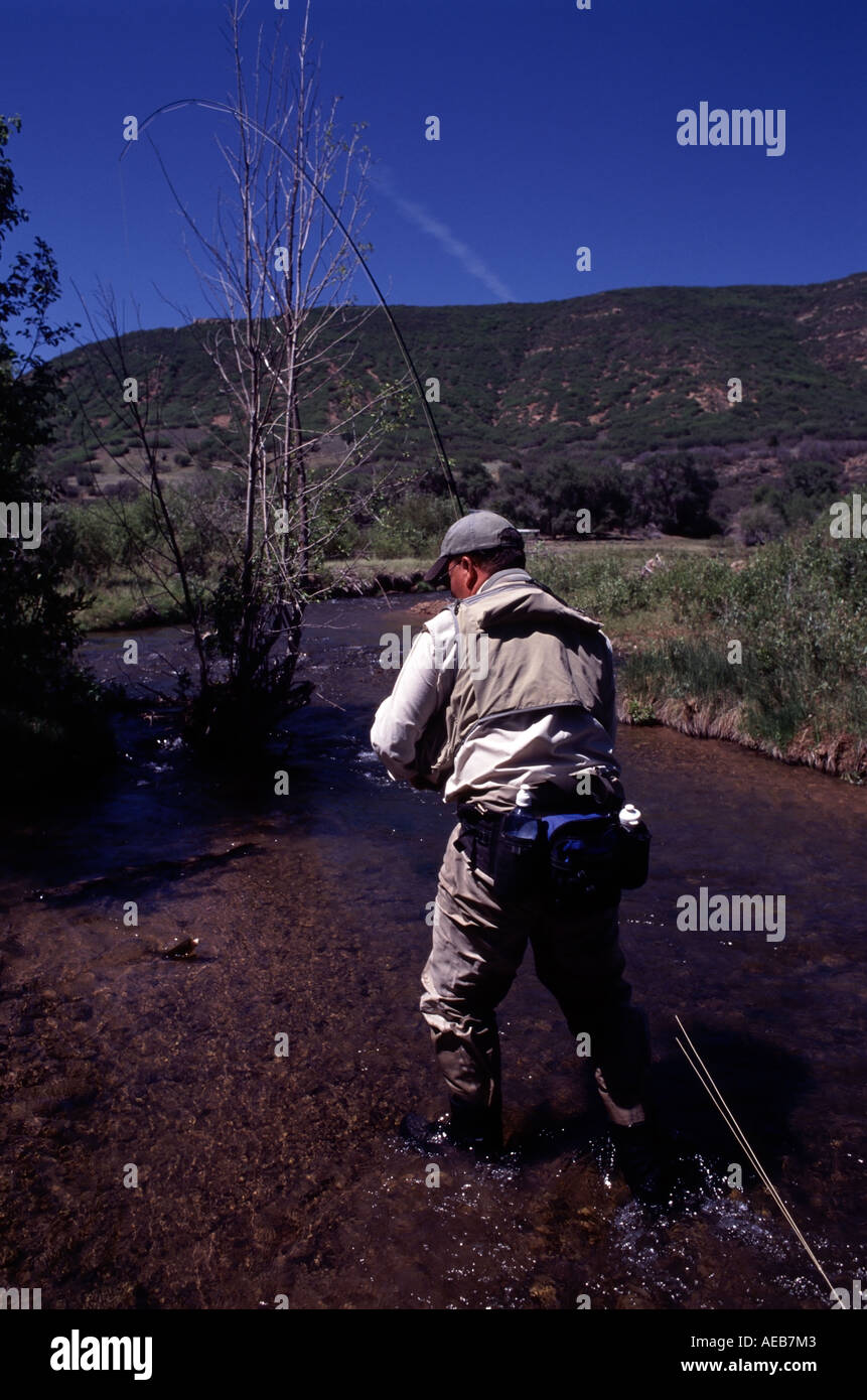 Fly Fishing For Trout In The Green River Outside Salt Lake