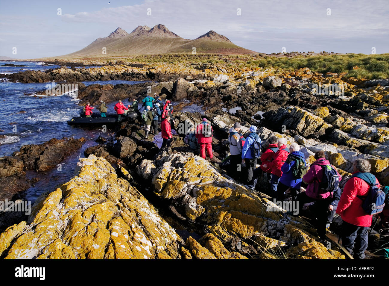 Tourists getting ready to depart in zodiac Crew helping tourists get onto a zodiac Steeple Jason Island Falklands - Stock Image