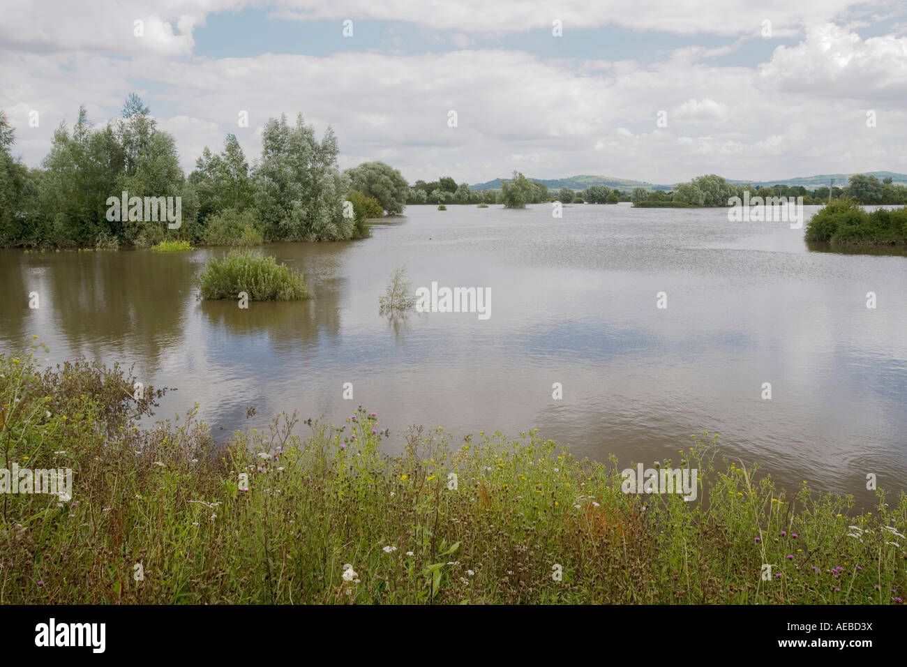 Flooded fields on the outskirts of Tewkesbury - Stock Image