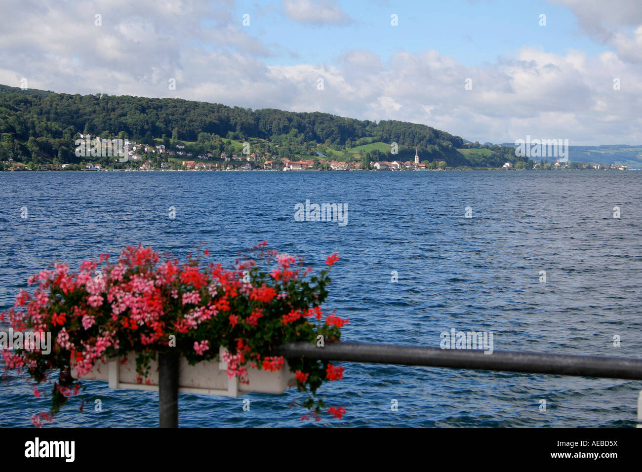 Look over the lake in the direction of schweizer shores vegetable island Reichenau in Lake of Constance unterlake Stock Photo