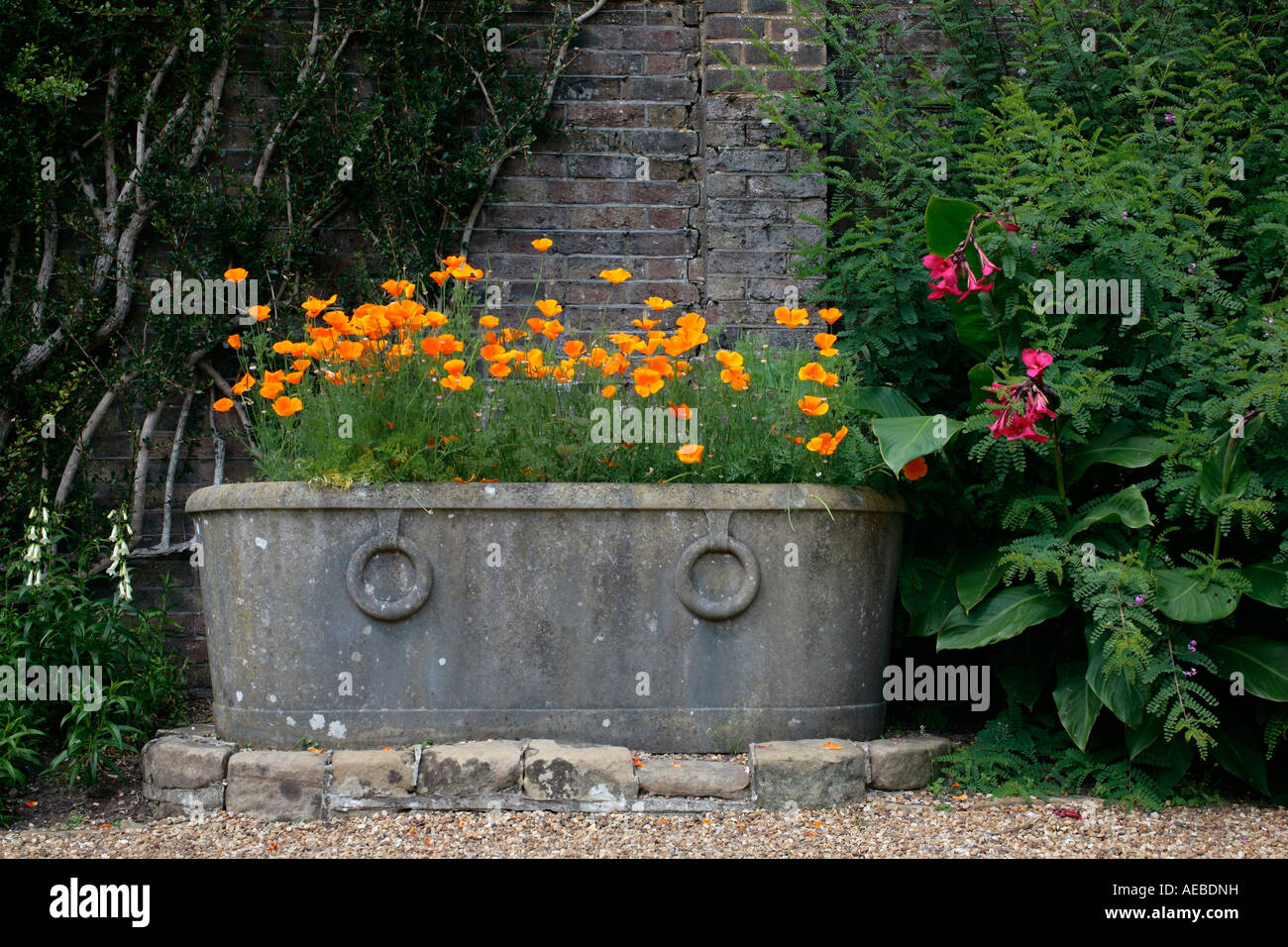 Large Lead Garden Planter Filled With Flowering Californian