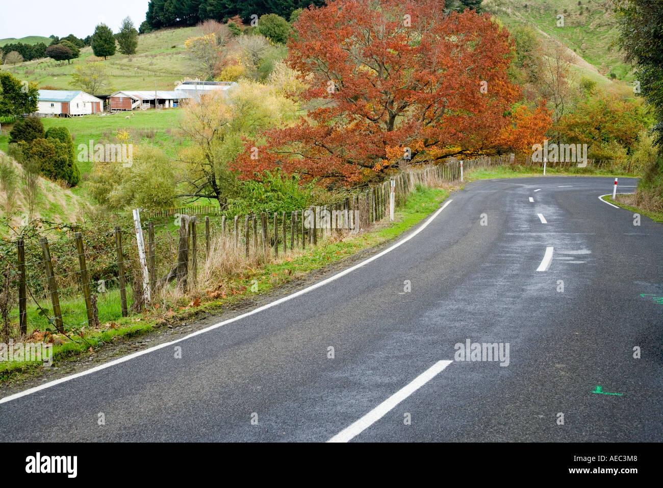 Forgotten World Highway Taumarunui Stratford King Country North Island New Zealand - Stock Image