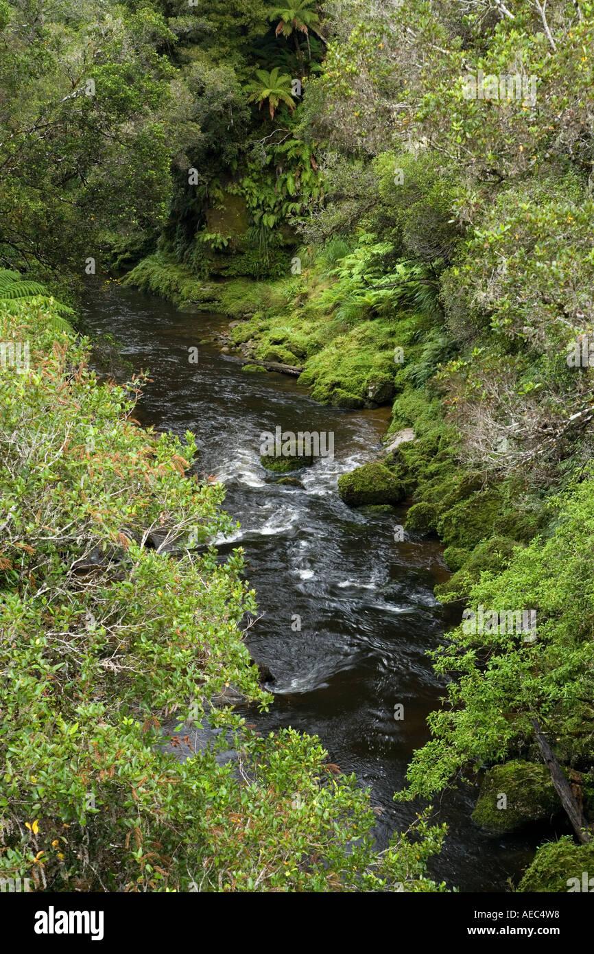 Tangarakau River Tangarakau Gorge Forgotten World Highway King Country North Island New Zealand - Stock Image
