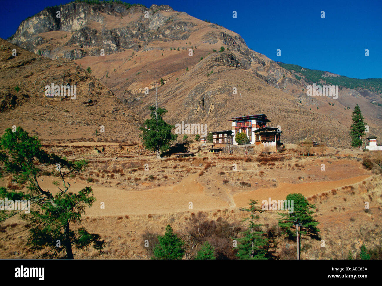 Chalet style houses and farmland Bhutan - Stock Image
