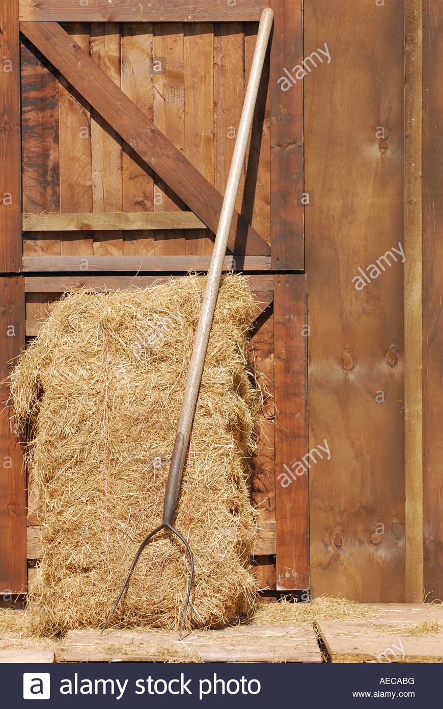 Hay bale and pitchfork leaning against a stable door on a UK smallholding. - Stock Image