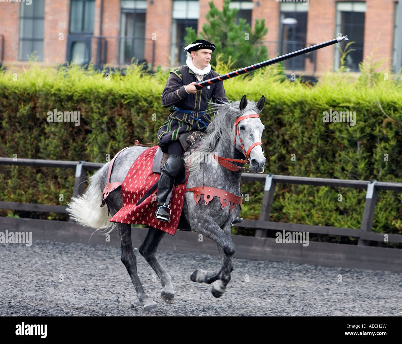 Medieval knight - Stock Image