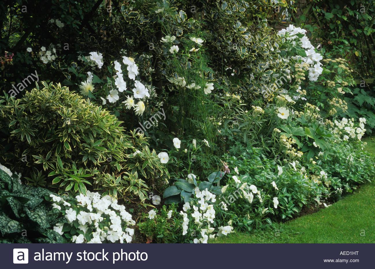 Shepheard S Lane Surrey Small Town Garden With White Flower Border