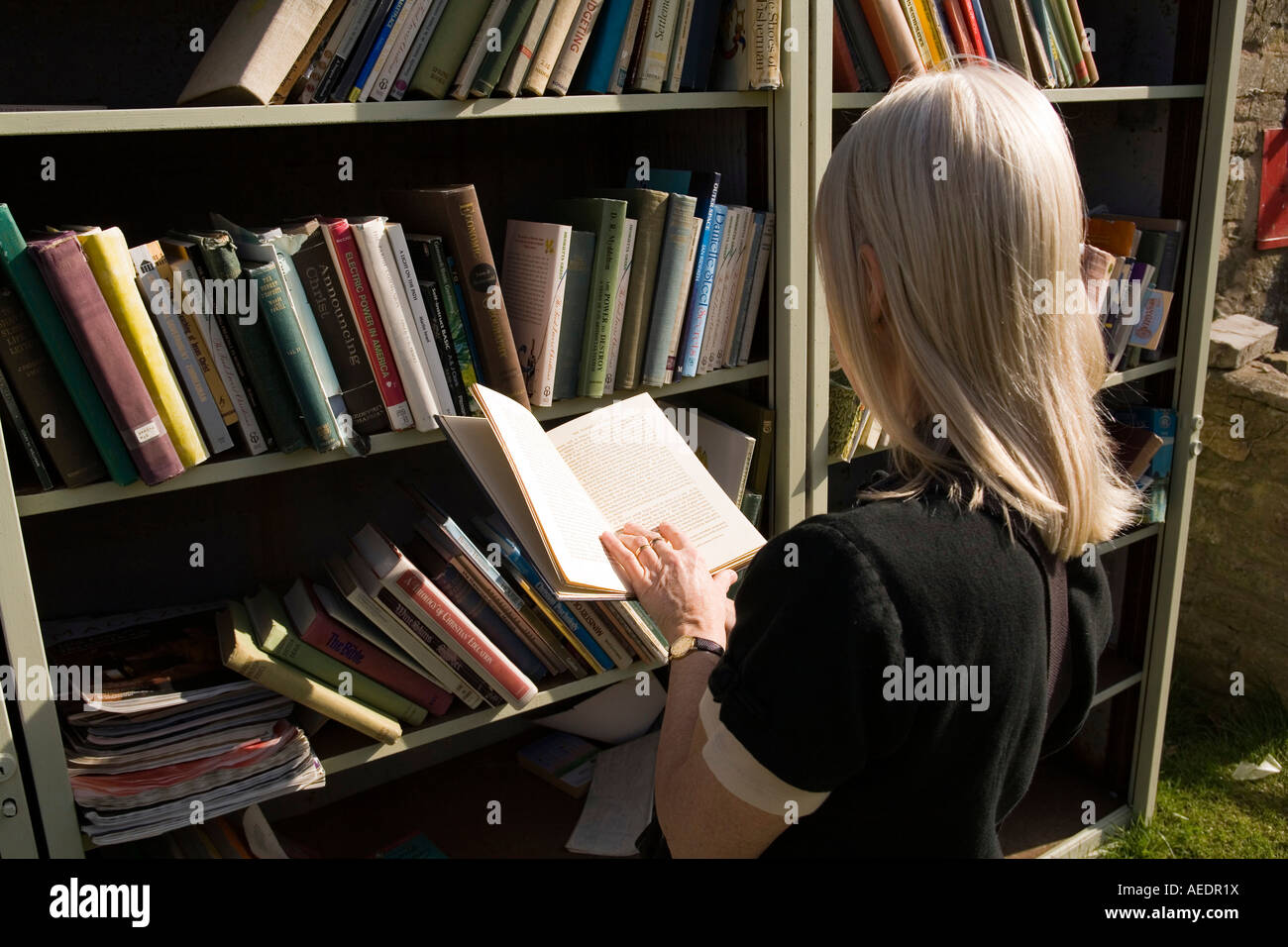 UK Wales Powys Hay on Wye Hay Castle woman reading secondhand book in outdoor bookshop - Stock Image