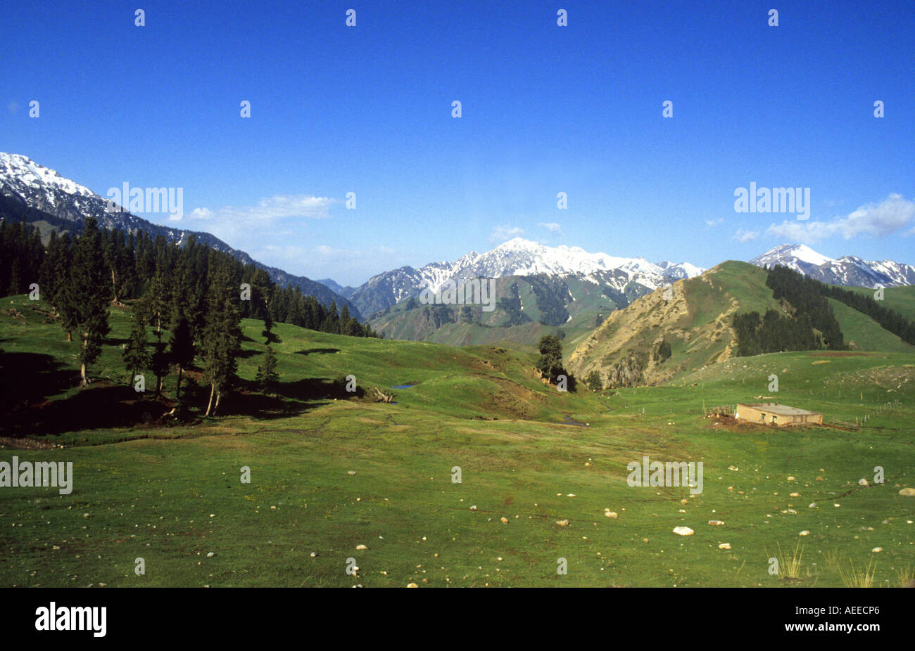 View of the Tian Shan Mountains in Western China. Tian Shan means Heavenly Mountains . Stock Photo