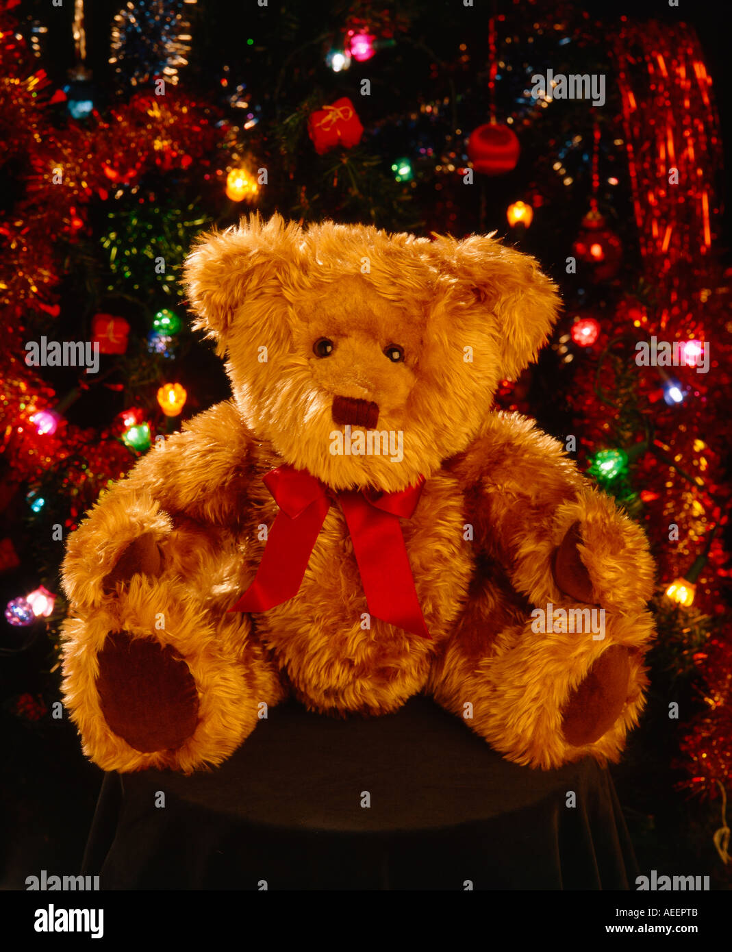 teddy bear doll sitting in front of christmas decorations and colored lights - Bear Christmas Decorations