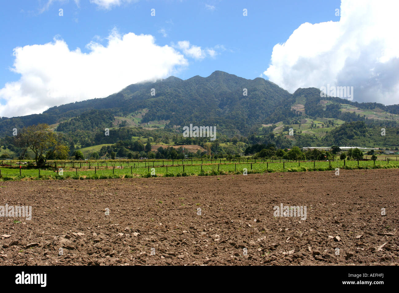 Baru volcano in the province of Chiriqui, Panama.  It is the highest point in the country. - Stock Image