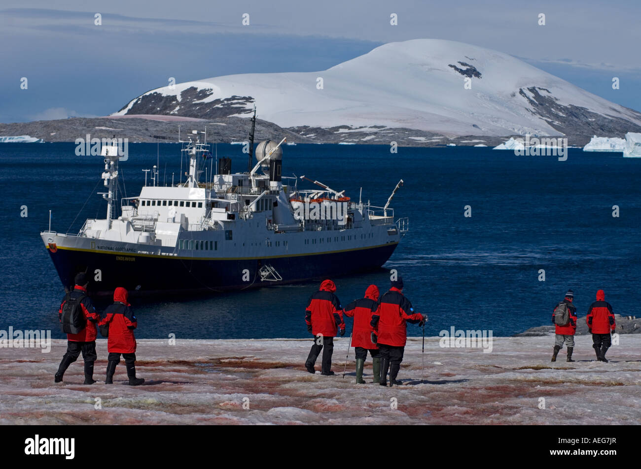 Tourists off the National Geographic expedition ship Endeavor check out a gentoo penguin colony Western Antartica - Stock Image