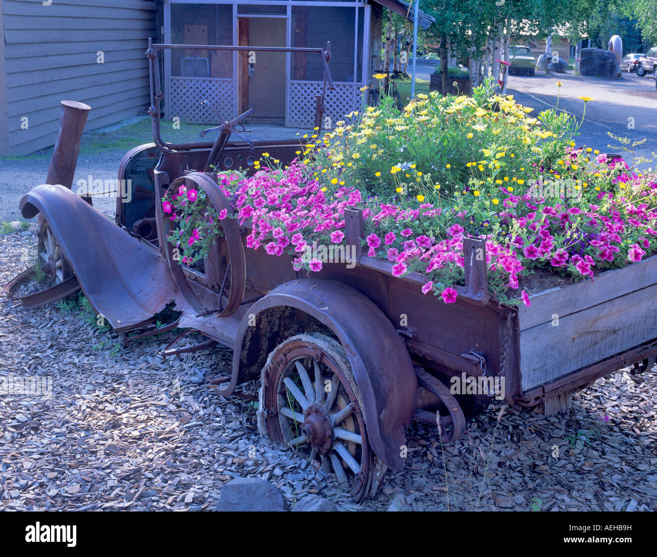 1917 Dodge Brothers Truck With Flowers Chena Hot Springs Alaska