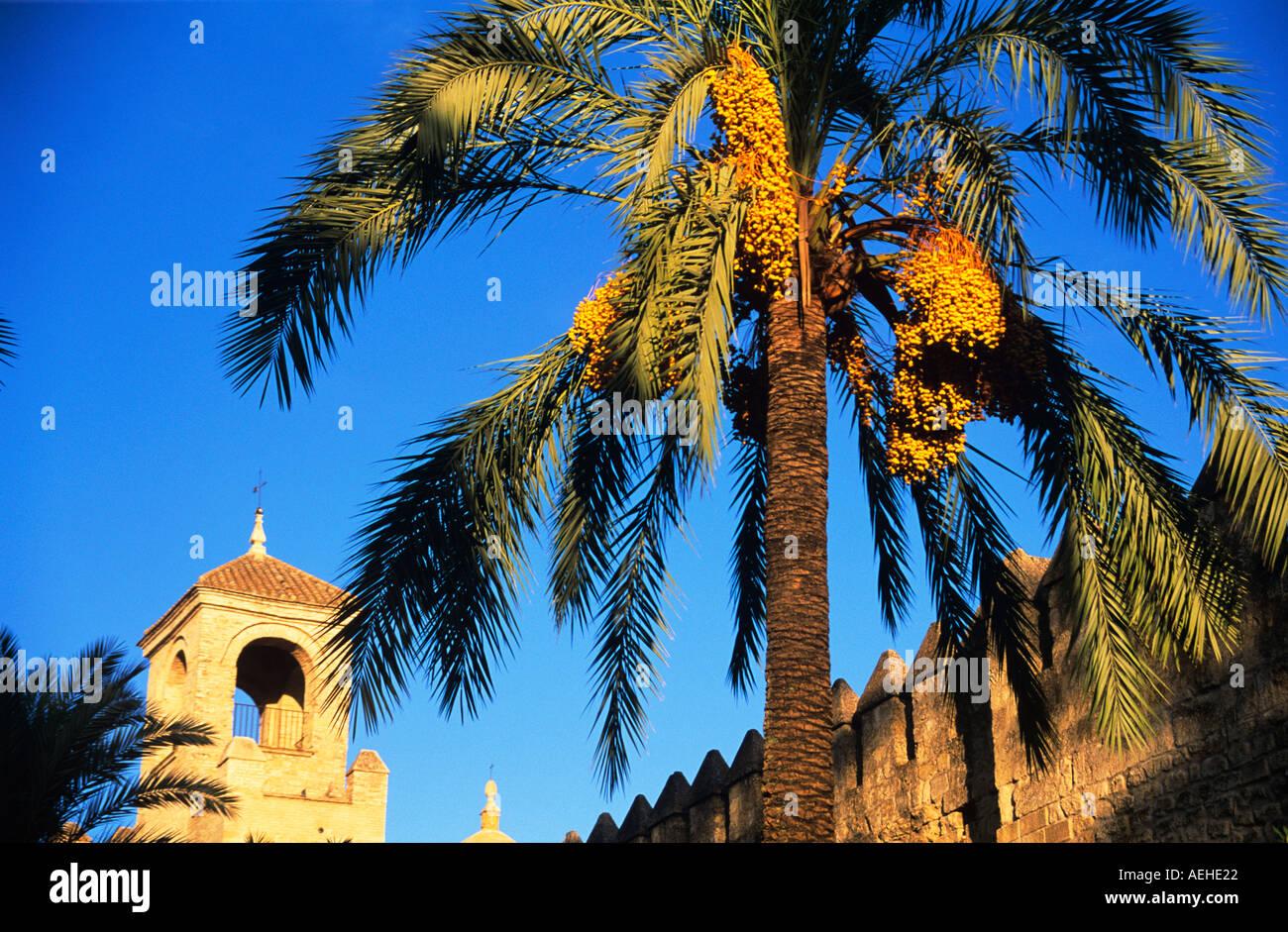 Alcazar de los Reyes Cristianos, Cordoba, Andalucia, Spain. - Stock Image