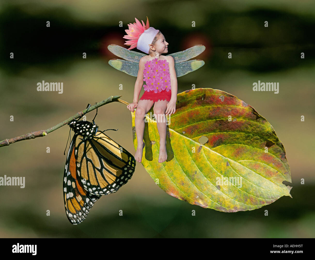 A flower fairy on a on a branch with a monarch butterfly - Stock Image