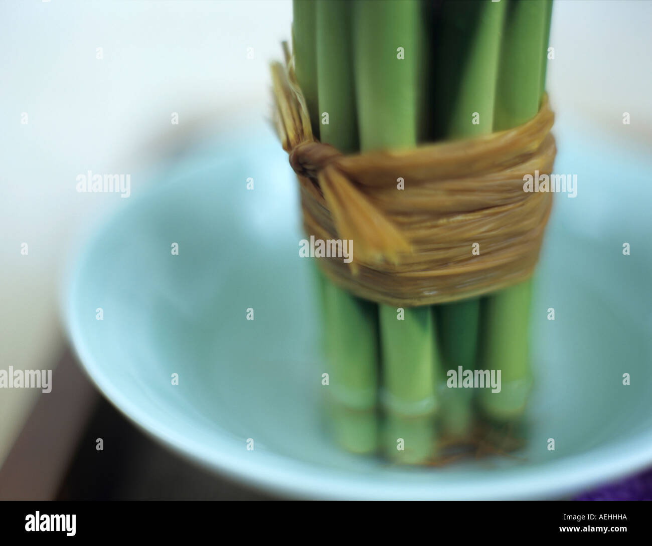 Bamboo tied with bast, close-up - Stock Image