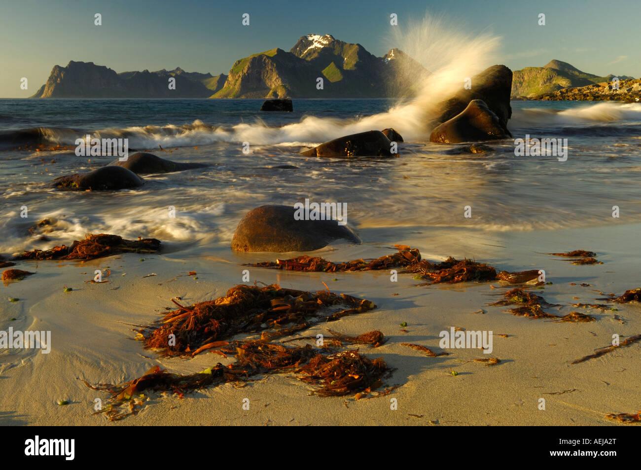 Rising tide, midnight sun, Flakstadoy, Lofoten, Norway, Scandinavia - Stock Image