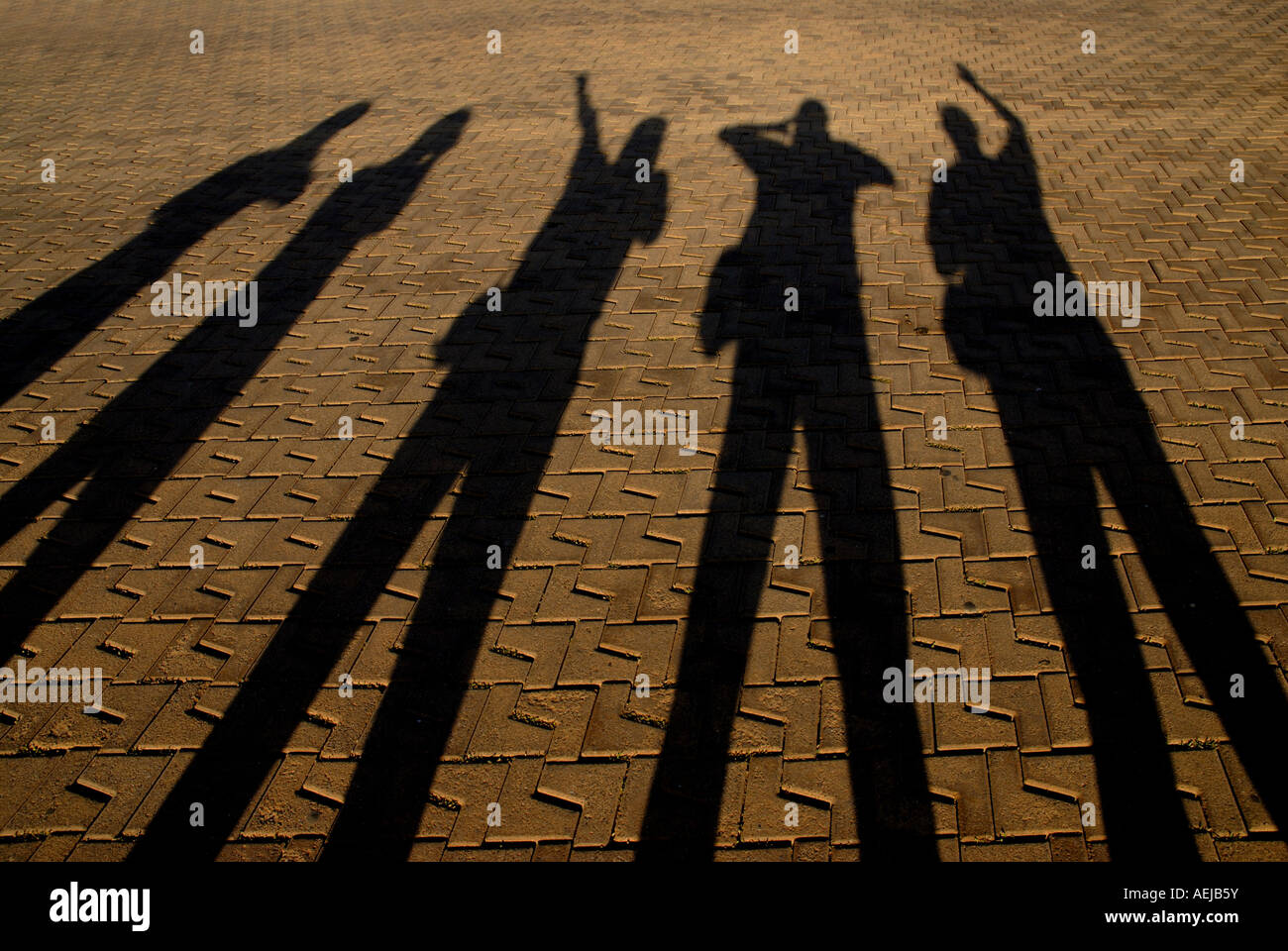 Long shadows of a group of persons - Stock Image