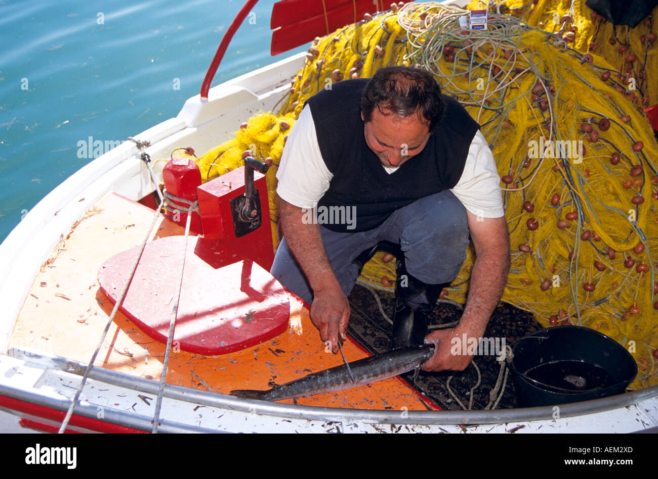 Fisherman cutting fish on his boat moored at the quayside, Argostoli, Kefalonia, Greece - Stock Image