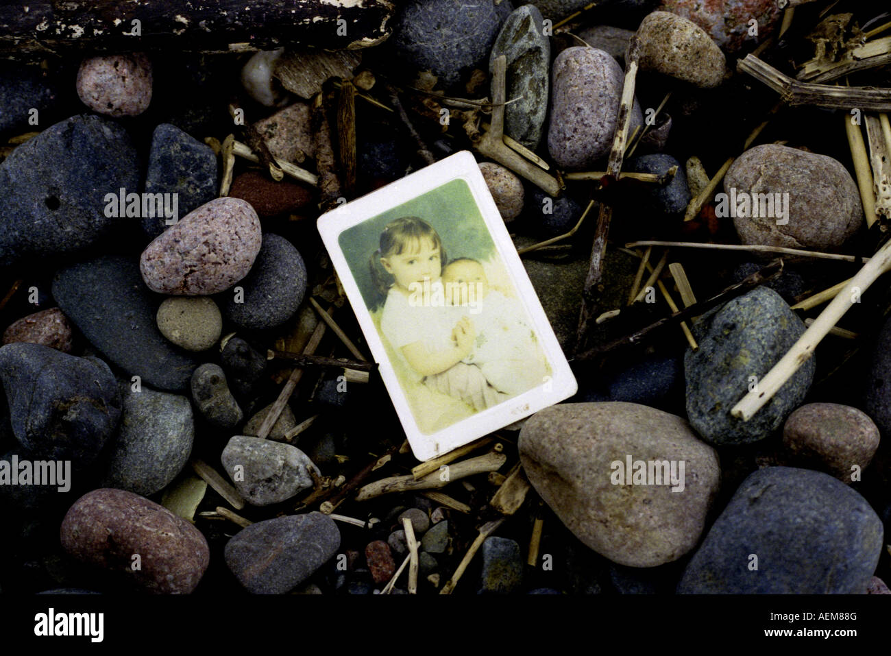 A family portrait lies washed up on a rocky beach. - Stock Image