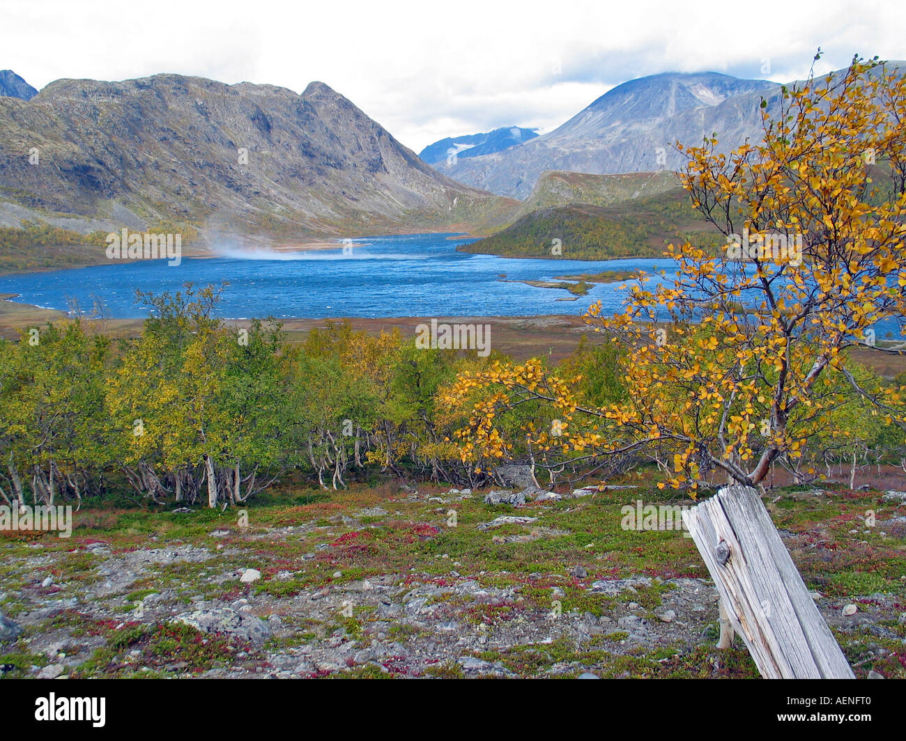 Wind playing over a lake in Jotunheimen during the turning of the seasons / Indian summer, Jotunheimen, Norway - Stock Image