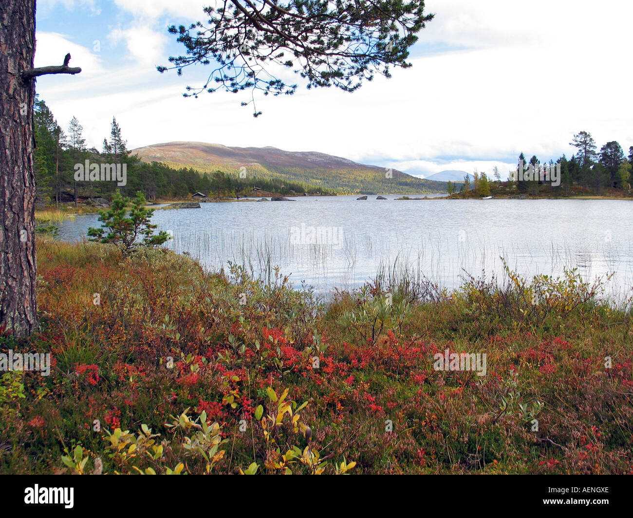 Lake on Valdresflya during the  turning of the seasons/Indian summer,  Jotunheimen, Norway - Stock Image
