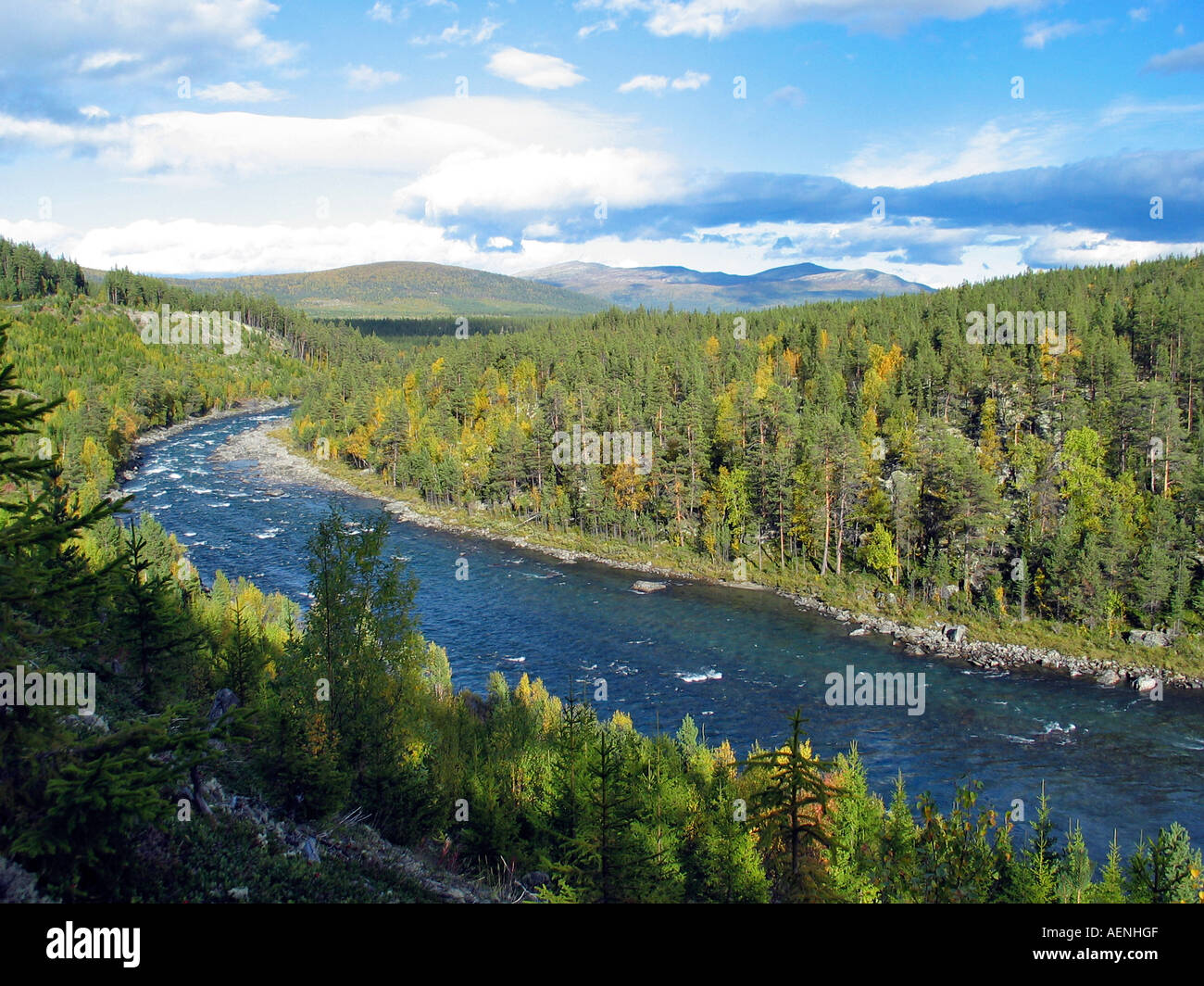 River running through green valley, Jotunheimen, Norway - Stock Image
