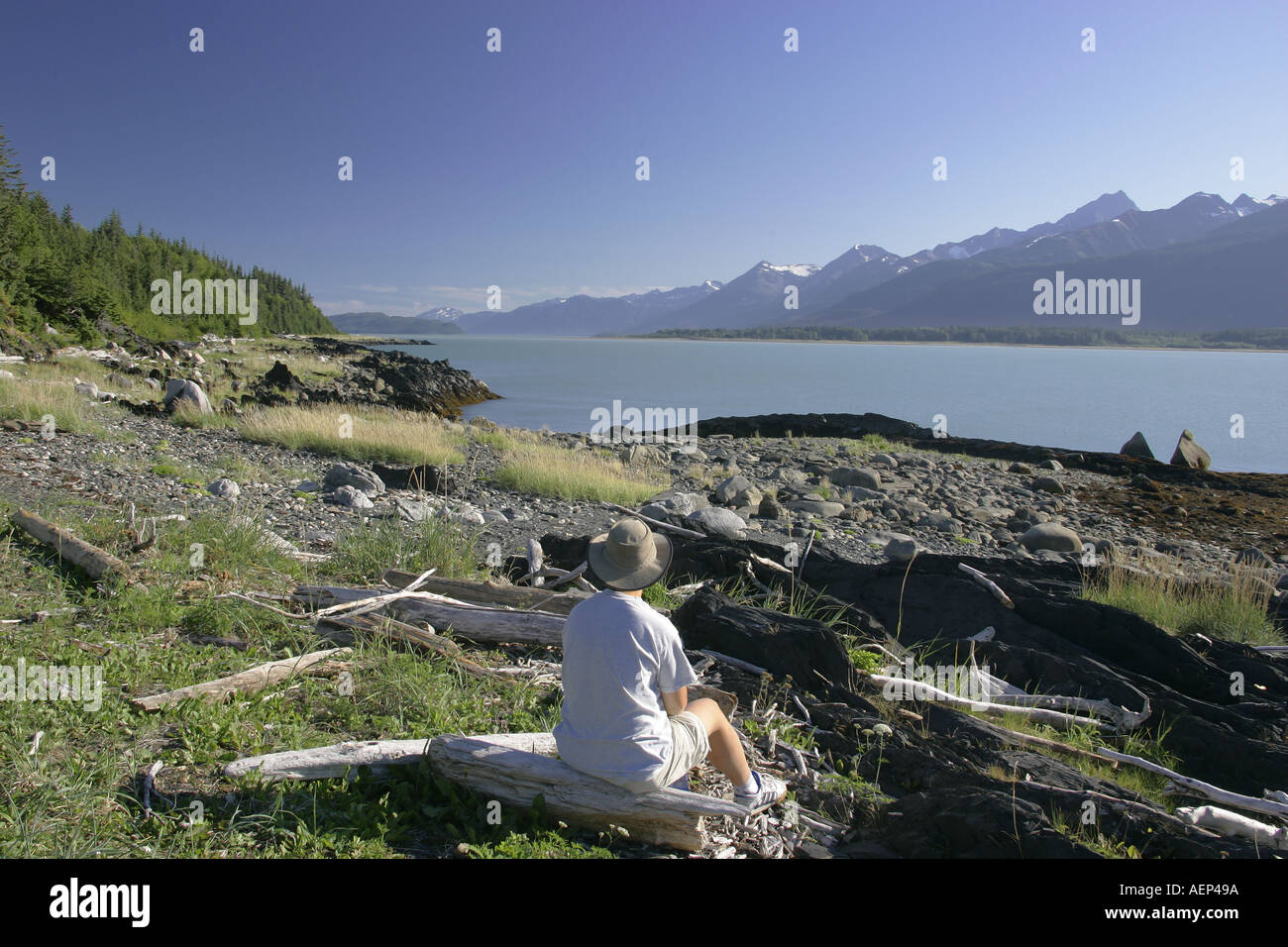 Seduction point in the Chilkat State Park Alaska USA - Stock Image