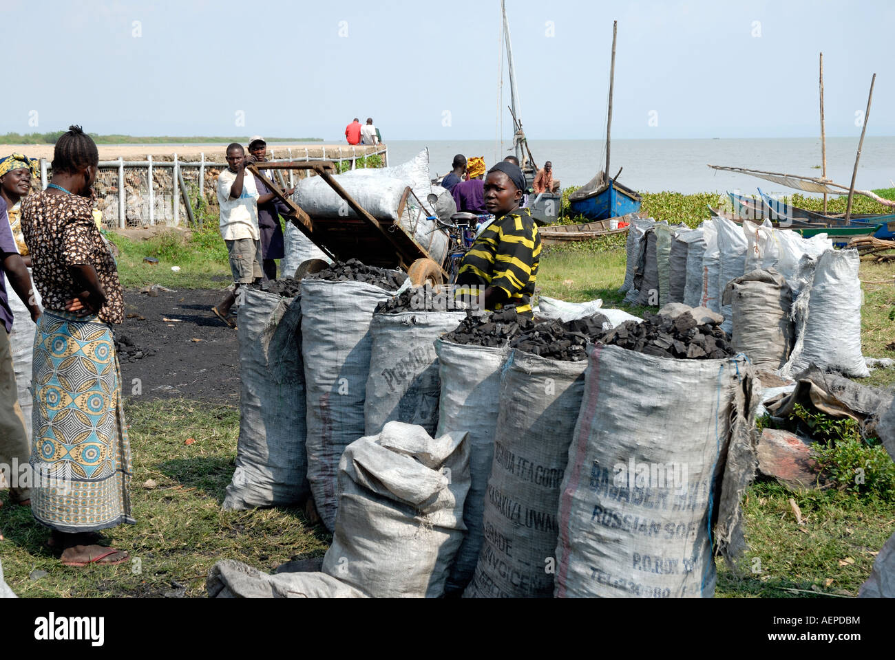 Luo women with sacks of charcoal imported from Uganda across Lake Victoria after being landed near Kisumu Kenya - Stock Image
