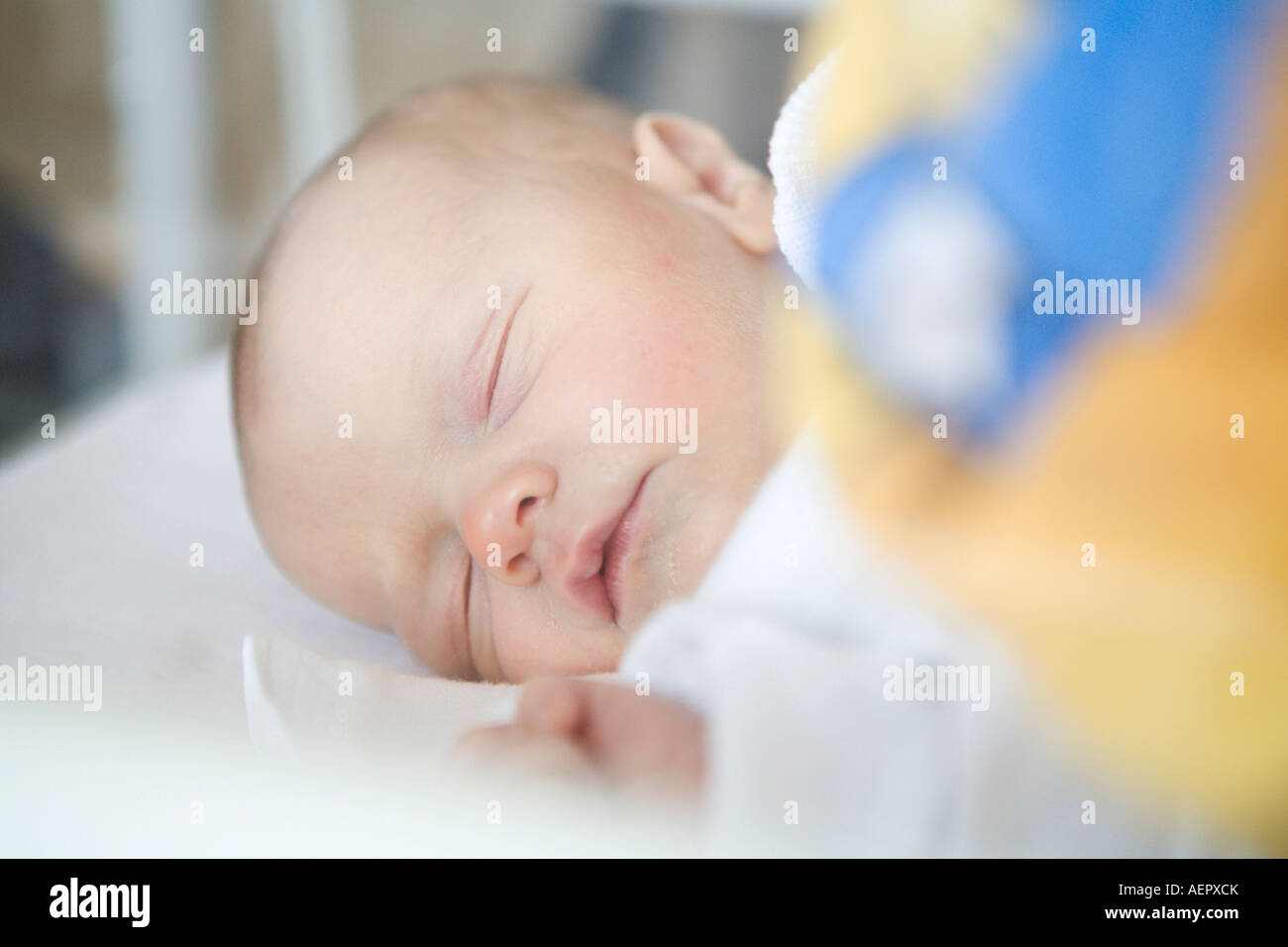 infant one day old - Stock Image
