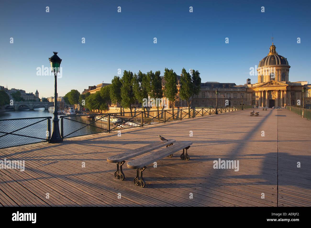 Pigeon on the Pont des Arts over the River Seine with the Instituit de France right the Ile de la Cite left Paris France - Stock Image