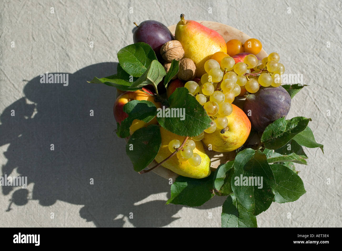 SEASONAL STILL LIFE WITH AN ASSORTMENT OF AUTUMNAL FRUITS AND SHADOW - Stock Image