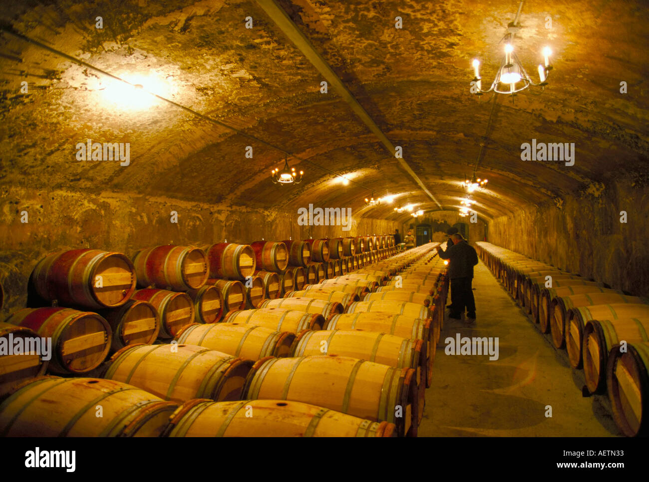 The cellars Chateau Lafitte Rothschild Pauillac Gironde France Europe - Stock Image
