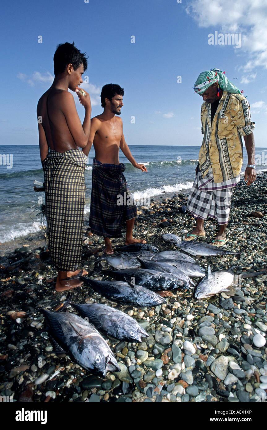 Fish market Hadibu Socotra Island Yemen - Stock Image
