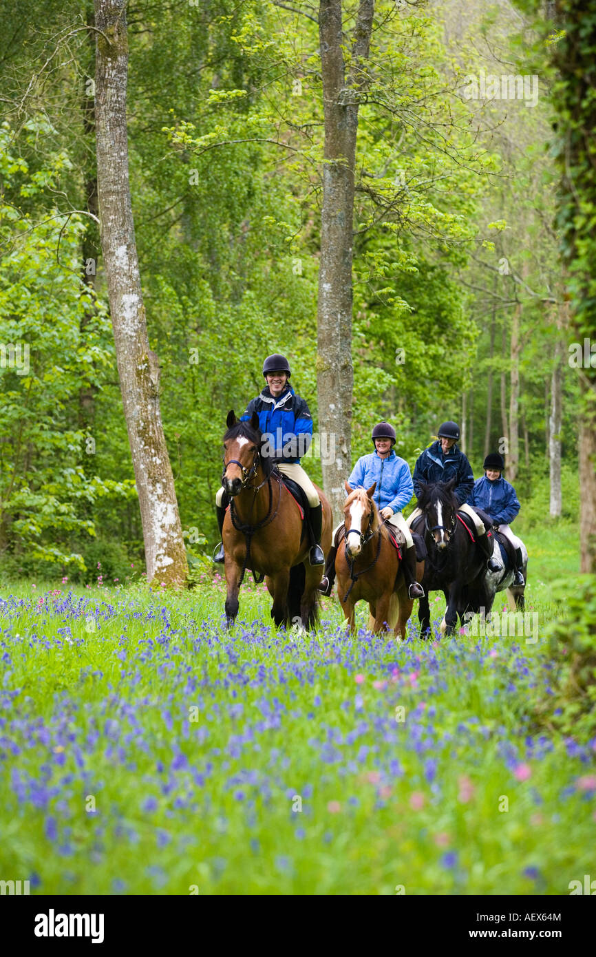Horse trekking in the Brecon Beacons National Park, Wales - Stock Image