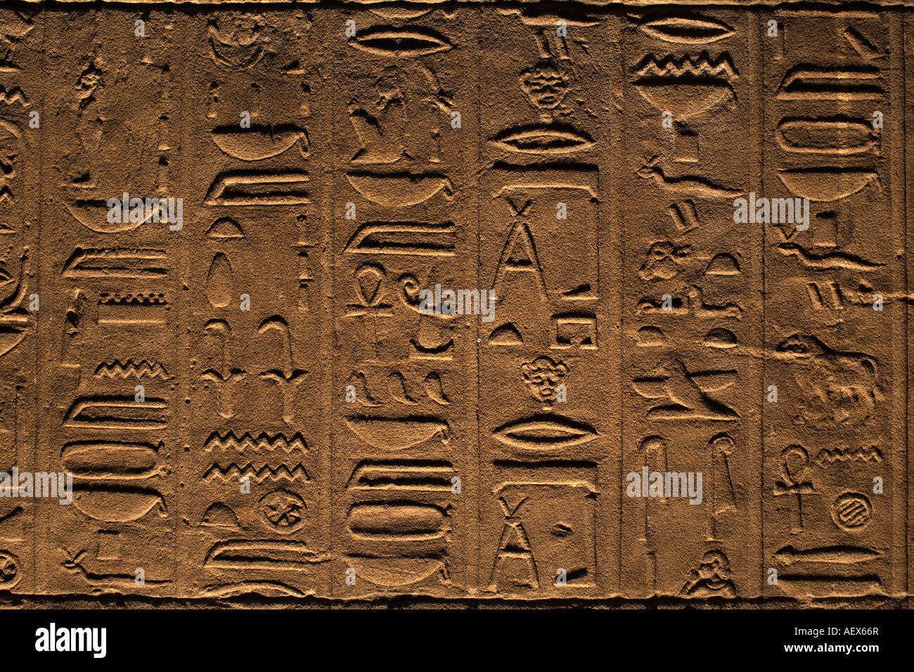 hieroglyphs in Philae Temple, Egypt - Stock Image