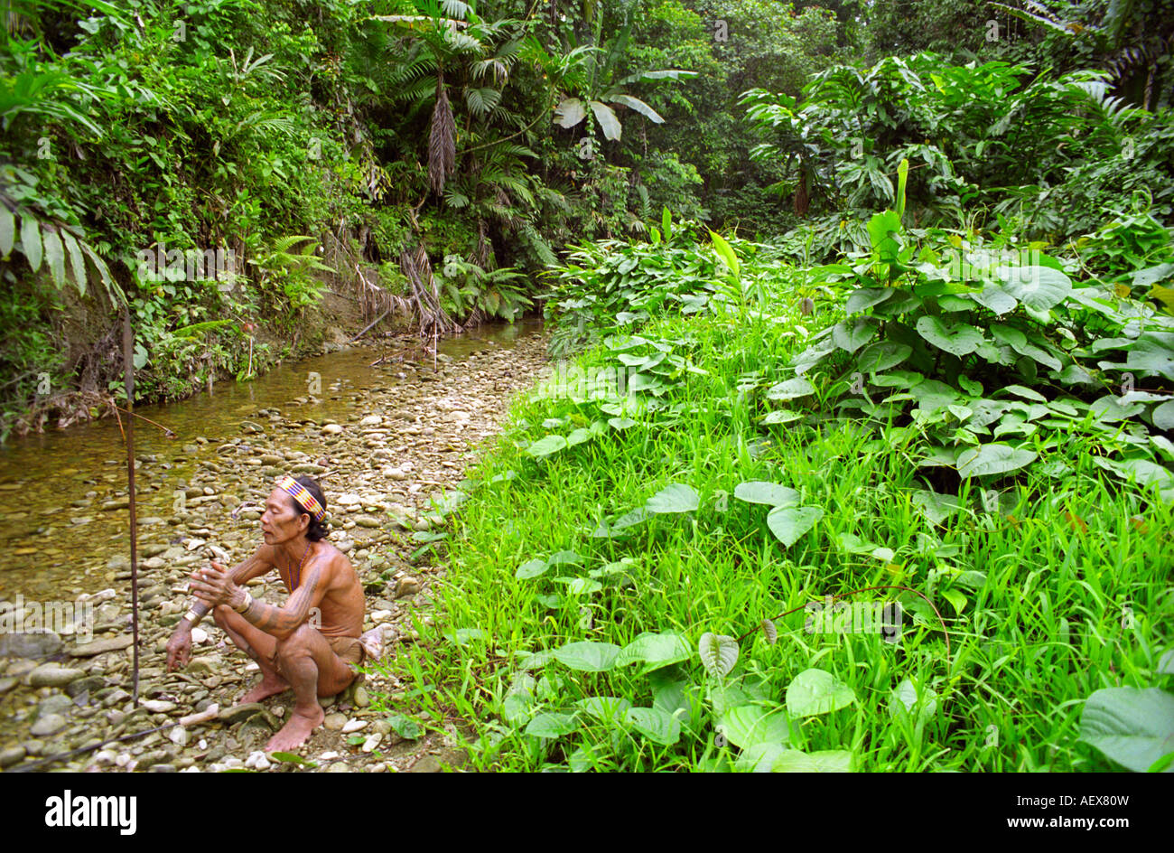 Mentawai man sitting by a stream in the forest on Siberut Island off Sumatra in Indonesia - Stock Image